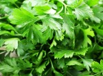 shutterstock_parsley 2
