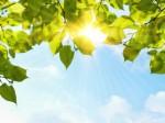 sun shine UVcare M