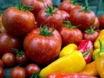 tomato & pepper M