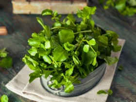 watercress M