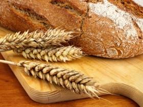 wheat gluten m