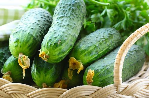 cucumbers m