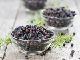 Juniper berries M