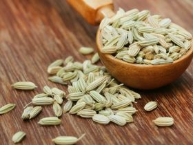Fennel seeds M