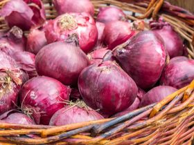 red-onion-quercetin