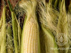 corn silk eyecatch