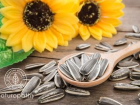 sunflower seeds eyeC
