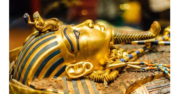 King Tut 630