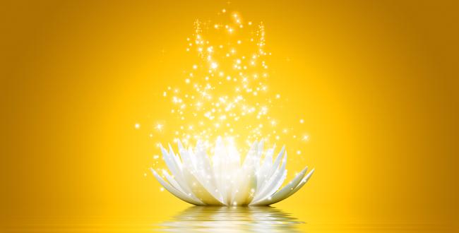 crown-chakra-lotus