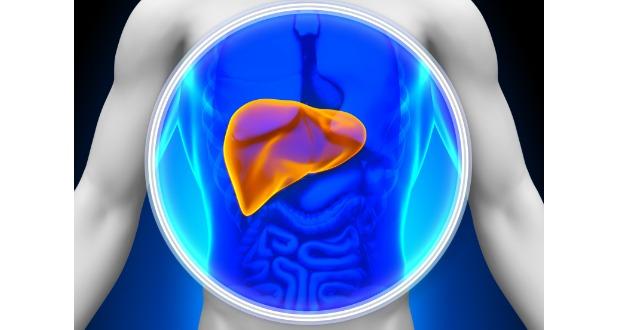 liver 112217 630