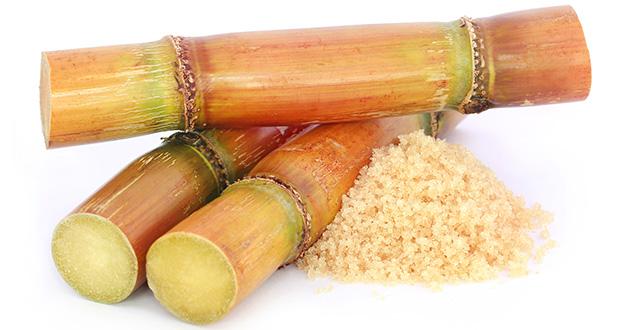 cane sugar-630
