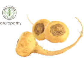 fresh maca root-eyecatch