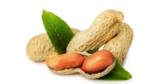 regular peanuts-630