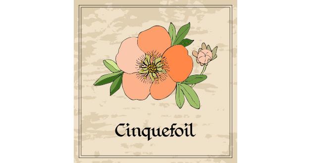 シンクフォイル(Cinquefoil)は、バラ科のハーブ