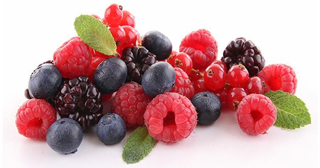 berries-630