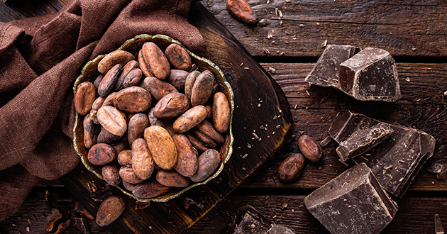 chocolate and cacao beans-630