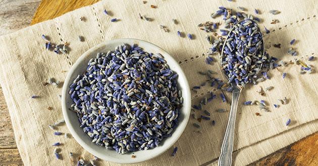 lavendar flower dry-630