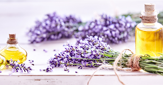lavender and oil-630