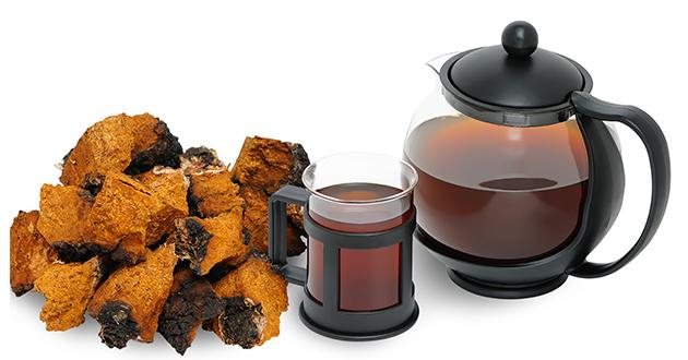 chaga tea-630