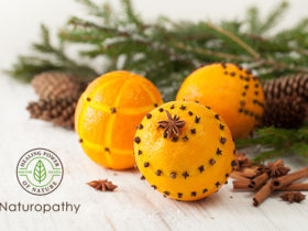 orange pomander 120118-eyecatch