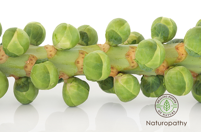 brussel sprouts on stem-eyecatch
