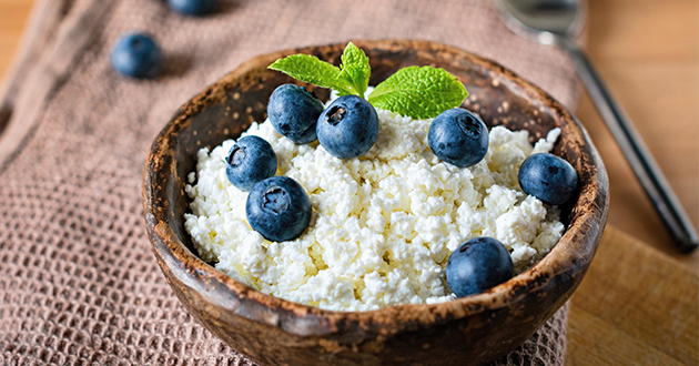 cottage cheese and blue berries-630