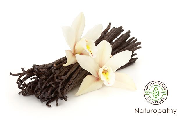 vanilla flower and beans-eyecatch