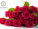 bouquet of red roses-eyecatch