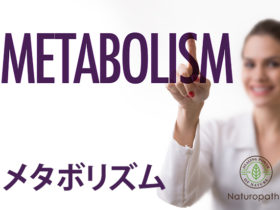 metabolism-eyecatch