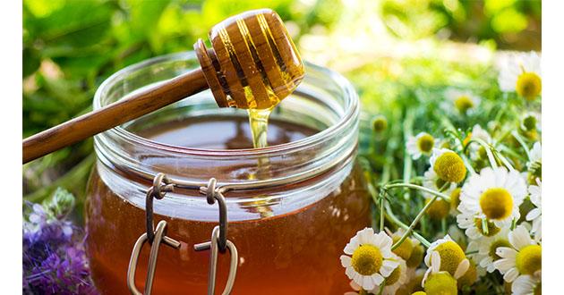 fresh raw honey-630
