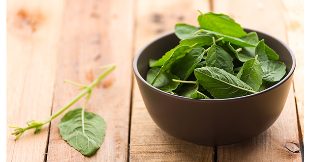 holy basil in a bowl-630