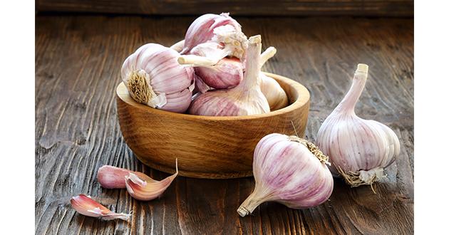 garlic-061119-630
