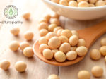 soy beans-saponin-eyecatch