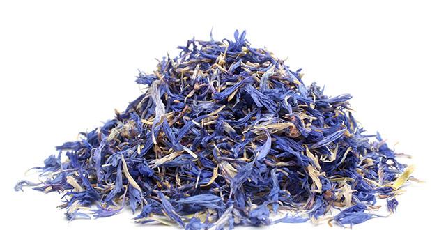 dried cornflower-630