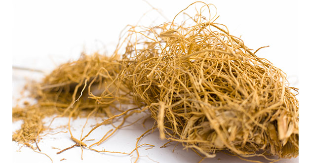 vetiver root-630
