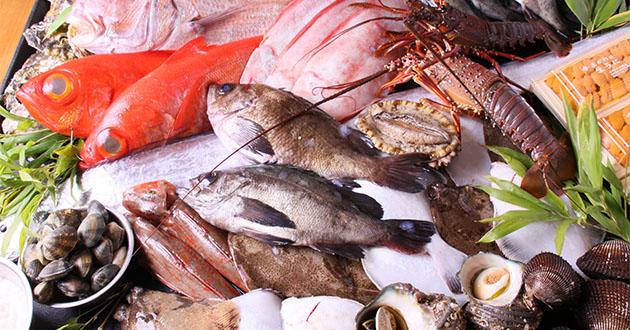 gyokairui魚介類-630