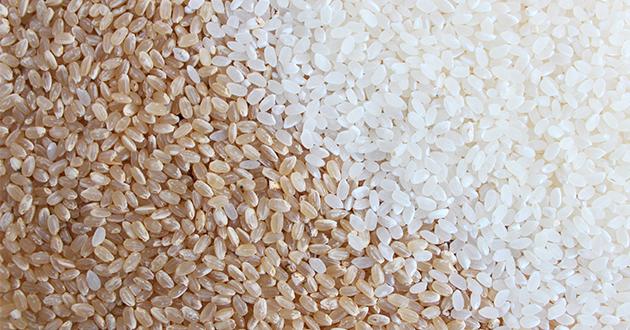 玄米は糖尿病予防に効果的