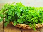 shutterstock_parsley