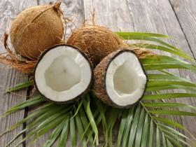 ココナッツの力