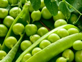 green peas M