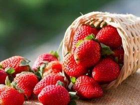 strawberries m
