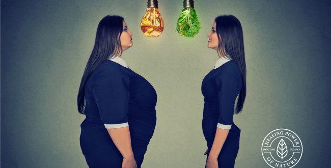 身体のためのダイエット術