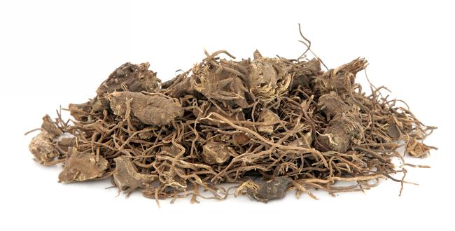 ブラックコホッシュの薬効成分があるのは根の部分