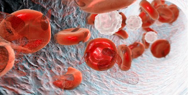 ヘモグロビンはヘム(赤色素)を持っているので赤い