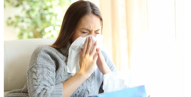 プロポリスは、免疫機能の強化に効果的