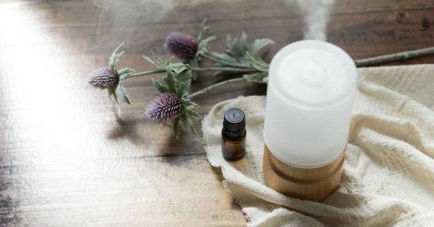 嗅覚から脳へのアプローチに期待