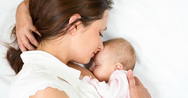 ブレスト・シスルは肝臓デトックスや母乳の分泌を促進