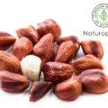 【ジャングルピーナッツ】~アマゾン産れのスーパーピーナッツ!アンチエイジングやがん予防に大きな期待~