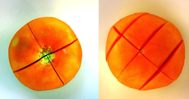 トマトはなり口の芯を取らずに深めに十字に切れ目を入れる