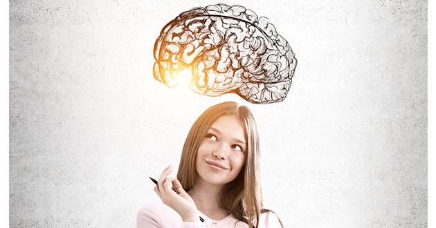 脳機能、記憶力などの改善
